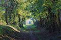 Louvigny Chemin Meunier.JPG