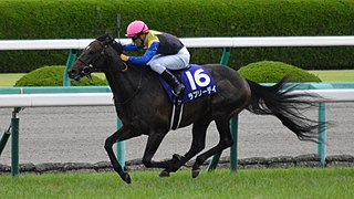 Lovely Day (horse) Japanese-bred Thoroughbred racehorse