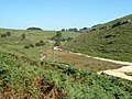 Lower Brook Bottom Calcareous Precipitate - geograph.org.uk - 456626.jpg