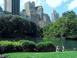 Lower Central Park Shot 5