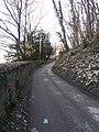 Lyon 9e - Chemin d'accès à la ferme Perraud, donnant sur la rue des Docteurs Cordier.jpg