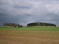 Mader Heide bei Gudensberg.JPG