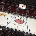Malmö Arena (15384987960).jpg