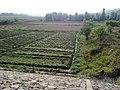 Mamu Khora , Khyber Pakhtunkhwa , Pakistan - panoramio.jpg