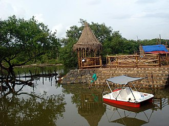 Pappinisseri - Image: Mangroves park pappinisseri 10