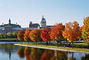 Marché Bonsecours and Foliage.jpg