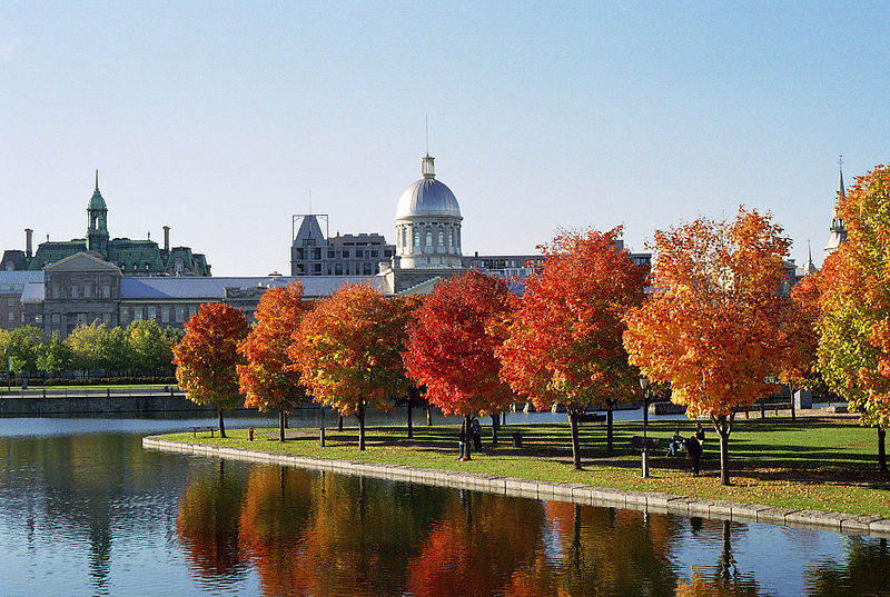March%C3%A9 Bonsecours and Foliage.jpg