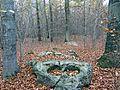 Marienborn Großsteingrab Opferstein.jpg