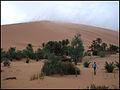 Marruecos - Morocco 2008 (2864963224).jpg