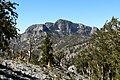 McFarland Peak 1.jpg