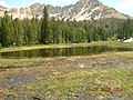 Meadow near Fourth of July Lake 1.JPG