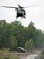 Mehrzweckhubschrauber NH90 mit Wolf.jpg