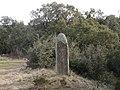 Menhir dels Palaus (Agullana) - 6.jpg