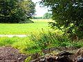 Merheimer Heide 2.jpg