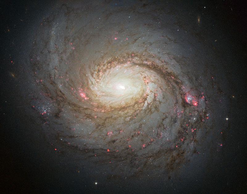 Messier 77 spiral galaxy by HST.jpg