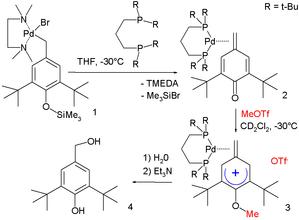 Arenium ion - Methylene arenium ion