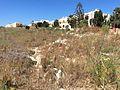 Mgarr Malta whereabouts 08.jpg