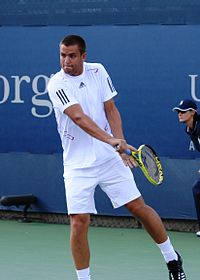 Mikhail Youzhny at the 2010 US Open 02.jpg