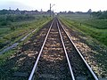 Milho no leito da ferrovia devido ao vazamento da carga dos vagões - Variante Boa Vista-Guaianã km 201 em Itu - panoramio.jpg