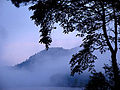 Mist Over Symes Pond.jpg