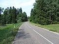 Mizarai 67308, Lithuania - panoramio.jpg