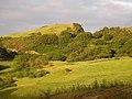 Moel Cefn Trefor - geograph.org.uk - 251711.jpg