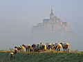 Mont Saint-Michel at september morning.jpg