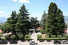 Villa Cardone Parco Di Guerra Massafra