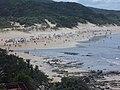 Morgan Bay - panoramio (3).jpg