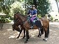 Mounted Polizia di Stato in Villa Borghese.jpg