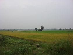 Mudachikkadu2.JPG