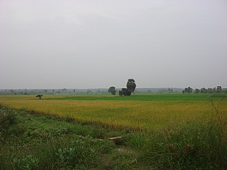Thanjavur district - Rural landscape near Peravurani
