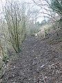 Muddy path to Felin Uchaf - geograph.org.uk - 1717076.jpg