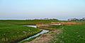 Munnekezijl - Schevekolk vanuit zuidoosten.jpg