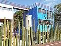 Muro de Cactus del Museo Casa Estudio Diego Rivera y Frida Kahlo.jpg