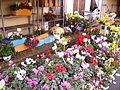Mussidan - fleurs au marché.jpg