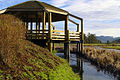 My Public Lands Roadtrip- Dean Creek Elk Viewing Area in Oregon (18473997514).jpg