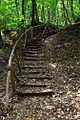 NP01-Stepenice.jpg