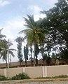 Nagavalli, Tumkuru (3).jpg