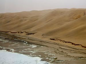 Namib - Namib desert and ocean