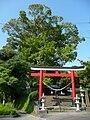 Nanakariosa Tanuki Shrine 01.JPG