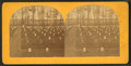 National cemetery, Arlington, Va, by Bell & Bro. (Washington, D.C.) 6.png