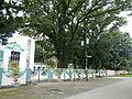 Natividad,Pangasinanjf8717 15.JPG