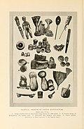 Natural history of Hawaii (Page 70) (7153435825).jpg