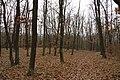 Nature reserve Šance in autumn 2012 (28).JPG