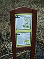 Nature trail - description boards - geograph.org.uk - 1743346.jpg