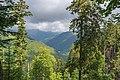 Naturschutzgebiet Feldberg (Black Forest) - Alpiner Steig am Feldberg - Bild 019.jpg