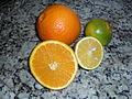 Navel Orange and Pera Orange.JPG