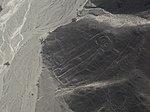 Nazca-Linien 062016 Owlman.jpg