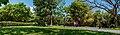 Negra Hipolita Park in Valencia City.jpg